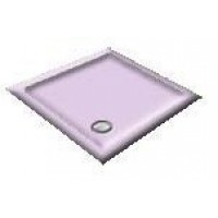 1000 Orchid Pentagon Shower Trays